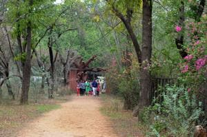 An escape to nature in the backyard of Gurgaon