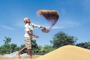 Boost to farmers as 34 government 'mandis' join virtual agri market...