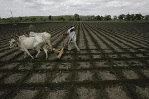 Maharashtra urges employees to donate day's salary for farmers' cause
