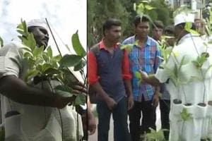 Selvakumar, a Tiruppur district employee has been distributing plant...