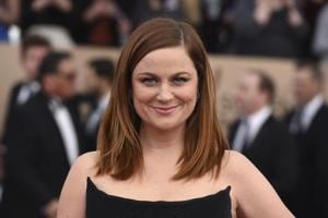 Amy Poehler jokes Daniel Day-Lewis 'will return as someone else',...