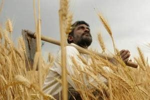 Maharashtra readies game plan for farm loan waiver