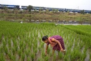Farm crisis: A good monsoon, bountiful harvest may still leave a long...