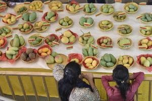 With around 500 varieties up for tasting, visitors are spoilt for choice at the festival on at Dilli Haat, Janakpuri.