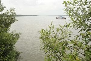 The Ichamati river that separates Indian and Bangladesh at Taki.