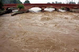 Yamuna river water level rose to danger mark in Karnal.