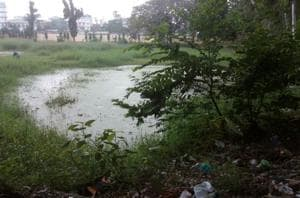 The waterlogged Kumhrar archaeological site in Patna.