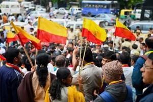 Constitution doesn't prohibit state flag: Committee tells Karnataka...