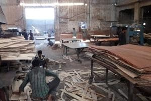 Workers at a plywood manufacturing unit at village Hambran in Ludhiana on Tuesday.