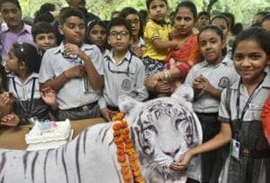 A walk, a cake and some songs: Delhi zoo celebrates white tiger...