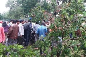 The fire brigade team of the Kalyan Dombivli Municipal Corporation (KDMC) cleared the branches.