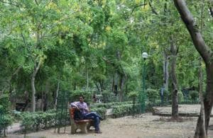 Delhiwale: Park of ordinary delights