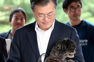 South Korean president welcomes rescue dog into his official residence