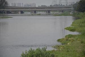 Ghaziabad: Major plantation drive planned along river Hindon on Aug 16