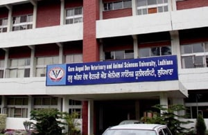 Ludhiana's GADVASU ranked as top veterinary university in India
