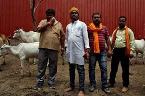 Violence by cow vigilantes increased in India in 2016: US report