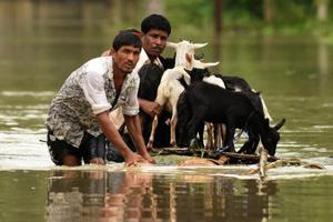 Assam floods kill 11 more, toll crosses 120