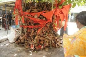 Gorakhpur: Amid deaths, people find hope under a 'peepal' tree