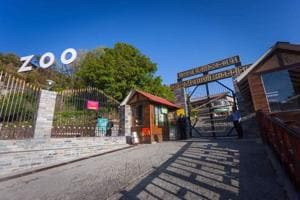 In the City of Lakes, Nainital zoo holds its own charm