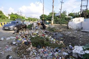 Noida Sector 20 residents demand permanent solution to garbage problem