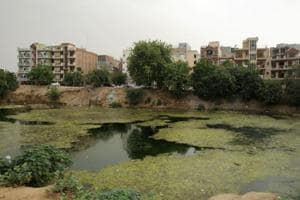 Municipal Corporation of Gurgaon to revive four ponds