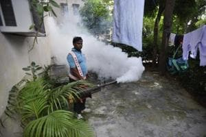 12-year-old boy dies of dengue in Delhi, first death in the capital...