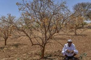 1,618 Maharashtra farmers have ended their lives in seven months
