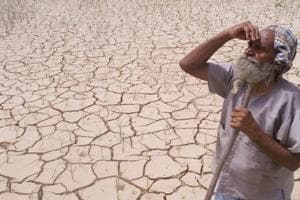 India's rain deficit widens to 6%, raises crop yield concerns