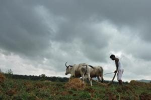 Maharashtra government to waive interest on farm loans taken from June...