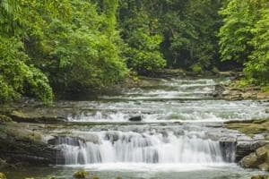 Planning a trip to Meghalaya? Maintain cleanliness to avoid being...