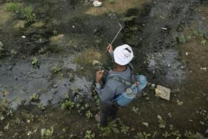 A field worker sprays anti-larval insecticide in Okhla. The area reported 19 deaths due to dengue in 2016.