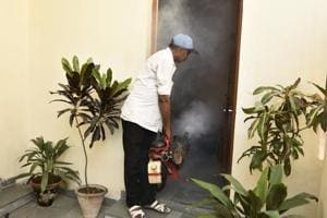 A field worker carries out fumigation at Okhla Shaheen Bagh in New Delhi on Tuesday.