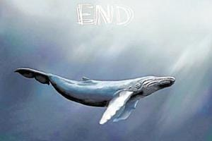 Blue Whale is a beautiful creature who has done precious little to be associated with a nasty phenomenon like the Blue Whale Challenge.