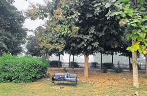 he modestly named Leisure Valley public park is in sector 29, Gurgaon.