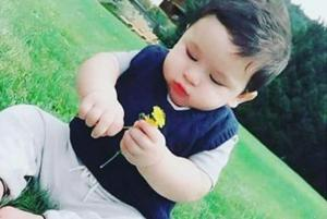 Is Taimur picking flowers for mommy Kareena Kapoor's birthday? Check...