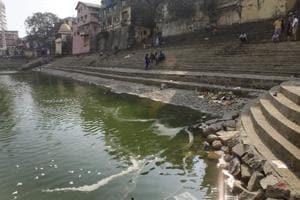 Over feeding killing fish at Mumbai's Banganga Tank