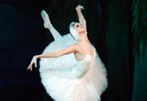 Swan Lake, the popular ballet  show from Ukraine is all set to get...
