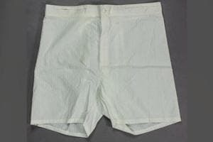 Adolf Hitler's 'surprisingly large' boxers sold for $5,500 at US...