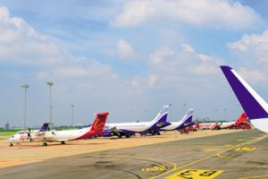 The airports in New Delhi and Mumbai, the busiest in the country, report the maximum number of bird hits.