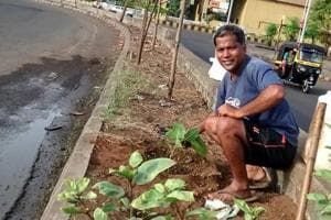 Adman plants 400 saplings of 60 types in a decade, nurtures them into...