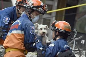 NASA's heartbeat detector helps search for Mexico earthquake survivors