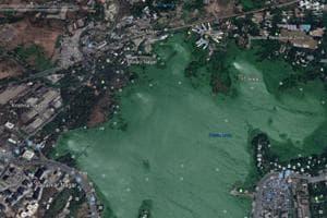A satellite image captured in 2017 shows encroachments around Powai lake.