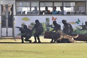 Commandos displayed various drills, including sky diving, neutralising terrorists, canine power, aerial skills, and yoga.