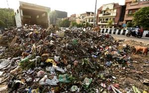 Noida struggles to clear garbage from city on Diwali eve