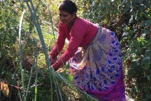 Uttarakhand: Women brave wild animals every morning to feed their...