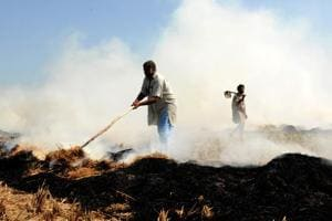 Punjab produces nearly 130 lakh tonnes of paddy straw, which is mostly burnt in fields.