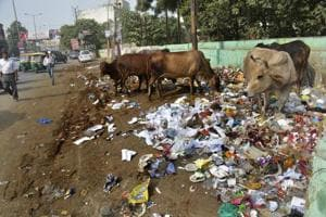 Road cleaners, coloured garbage bins for a squeaky clean Ghaziabad