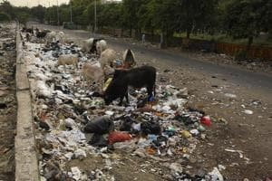 Noida authority to rope in consultant for waste management facility