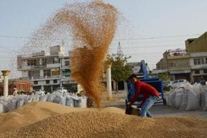 Govt hikes MSP for wheat by Rs 110 per quintal, pulses by Rs 200 per...