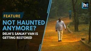 South Delhi's Sanjay Van is now a birders' paradise